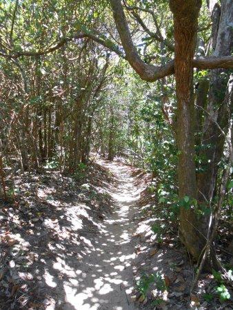 Santuario Ecologico de Pipa: senderos