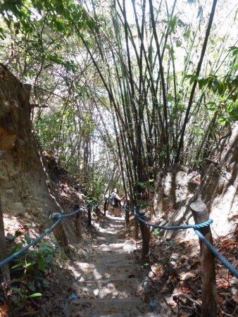 Santuario Ecologico de Pipa: bajada hacia PRAIA MADEIRO