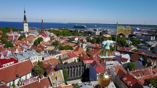Estonia4u