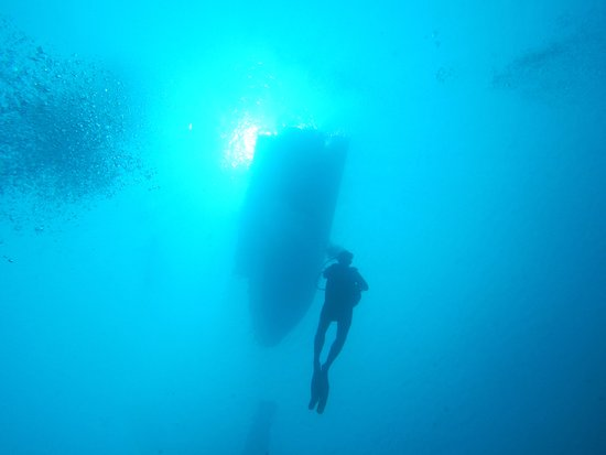 Philippine Fun Divers, Inc.: Into the blue