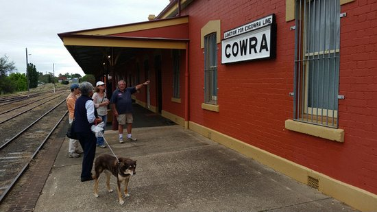A guided tour of Cowra station