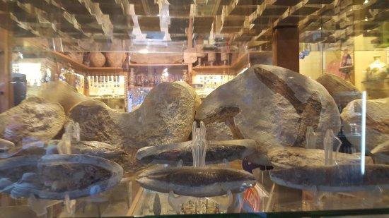 Byblos, Liban : more fossils
