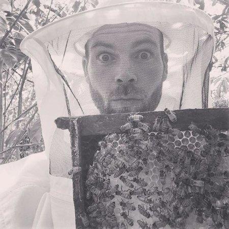 Naalehu, HI: apiary tours