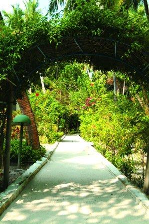 Biyadhoo Island Resort: Walkway