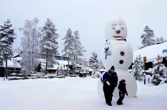 Rovaniemi Snowmobile Tour: Visit a...