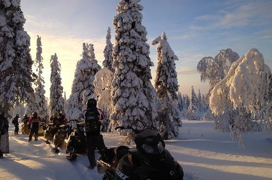 Arctic Snowmobile Tour naar de ...
