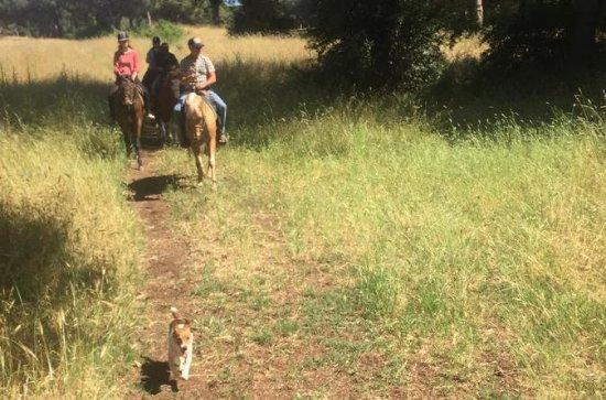 Trilha de Equitação na Roma Antiga