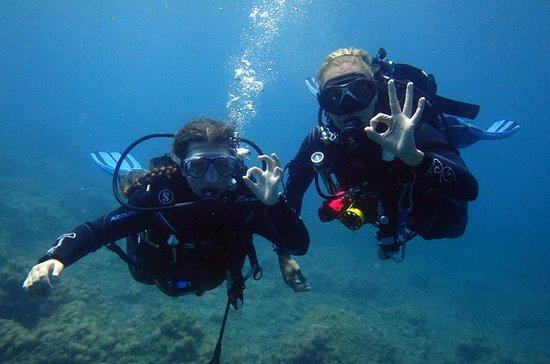 Découvrir la plongée sous-marine