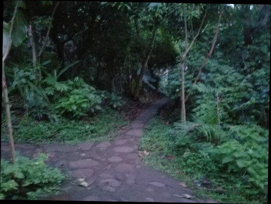 Santa Cruz, Nicarágua: 20171021_052144_large.jpg