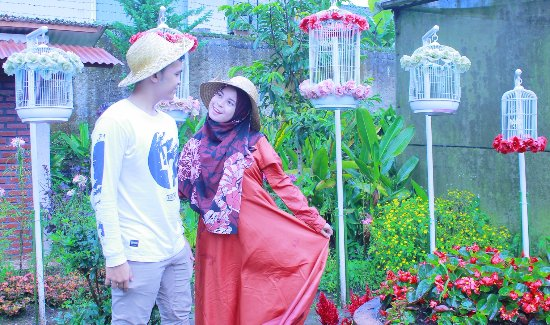 Cibodas, Indonesien: begonia park is good views