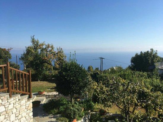 Mouresi, Greece: Adis Oneirou Hostel