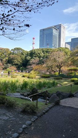 The East Gardens of the Imperial Palace (Edo Castle Ruin): IMG_20171104_111147_large.jpg