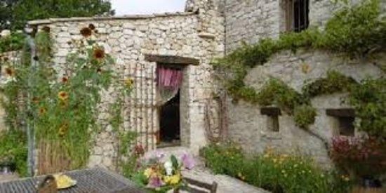 Les Vignes de la Tour St Blaise: VUE SUR REZ-DE-JARDIN COTE CUISINE