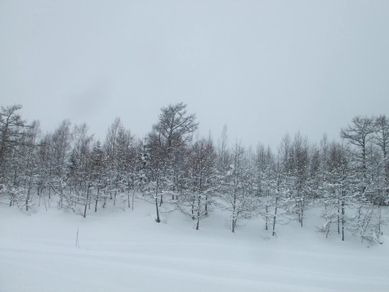 Niseko, Japan: ニセコ ビレッジ スキー リゾート