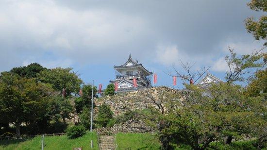 Ieyasu-ko Yoroikakematsu