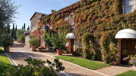 Sarteano, إيطاليا: La Sovana vialetto di ingresso