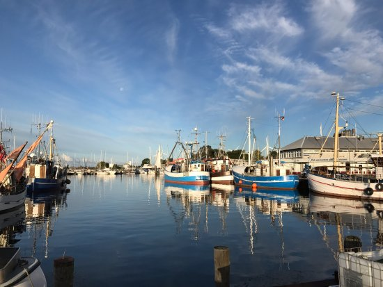Burgstaaken Harbour, Fehmarn, Germany, fall view
