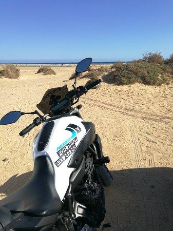 East Coast Rides: IMG_20171101_151522_large.jpg