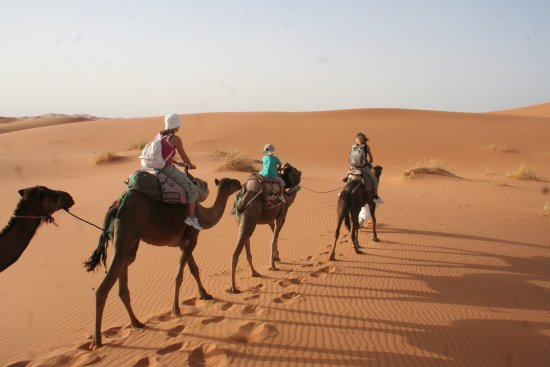 Desert Raid Sahara