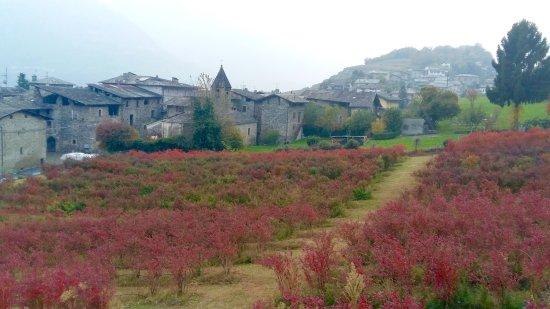Tresivio, Italia: Exterior del agroturismo