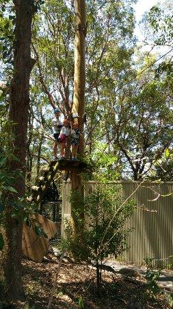 Gold Coast, Australia: 20171104_134212_large.jpg