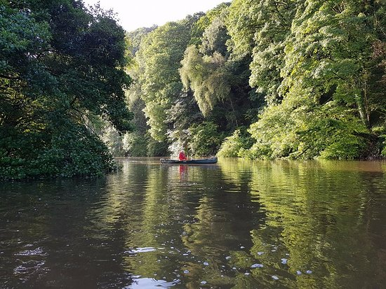 Салташ, UK: One of our guided canoe trips on the river Tamar