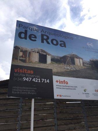 Roa, Spain: Visita súper interesante impartida por la encantadora Mari Sol arqueóloga, que con todo lujo de