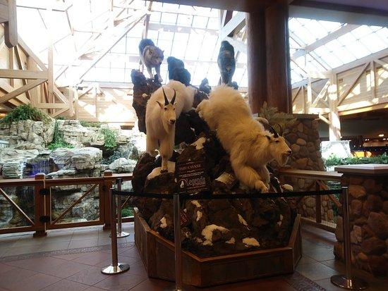 Little River Casino Resort: 1021171543_large.jpg