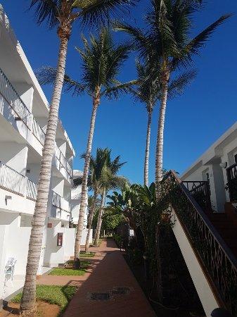 Apartamentos Fariones: 20171101_141452_large.jpg