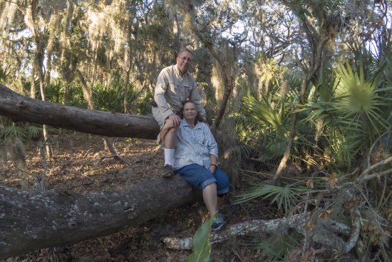 Fort Clinch State Park: Grandpa & Grandma sitting in a tree. Some trees were down from the recent storm.