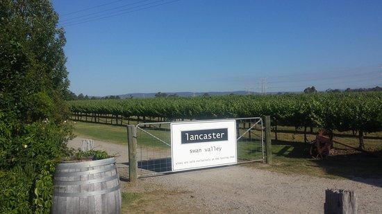 Lancaster Wines
