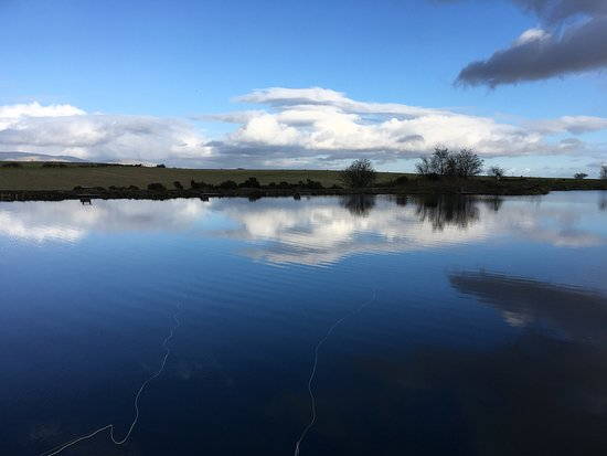 Wellsfield Trout Fishery