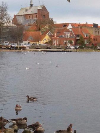 Haderslev, Dinamarca: Udsigten fra værelset