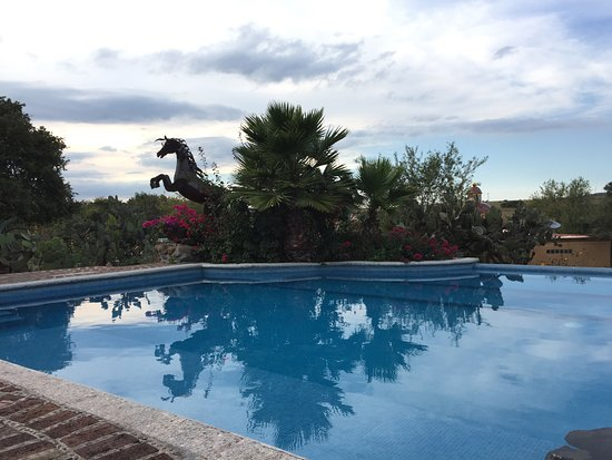 San Agustin Buenavista, Mexico: The pool (with horse statue)