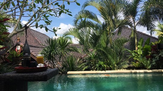 Bidadari Private Villas & Retreat: IMG-20171104-WA0008_large.jpg