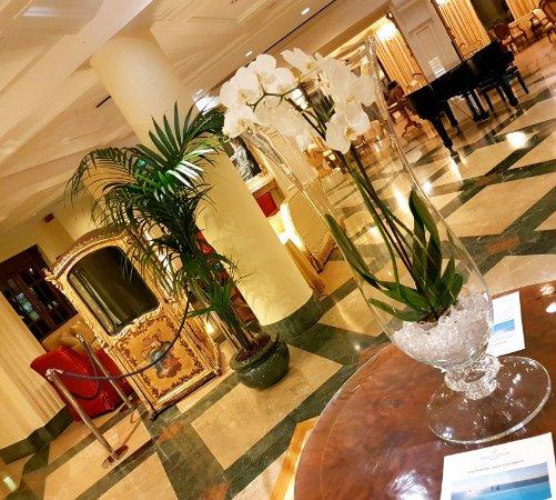 Excelsior Palace Hotel: 20170205_101135_large.jpg