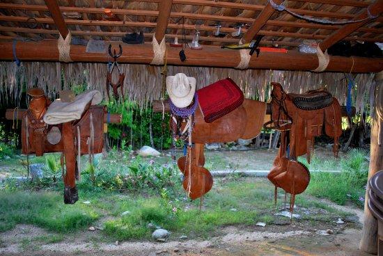 Todos Santos, Mexico: Sillas para montar a caballo, hechas 100% de manera rustica...