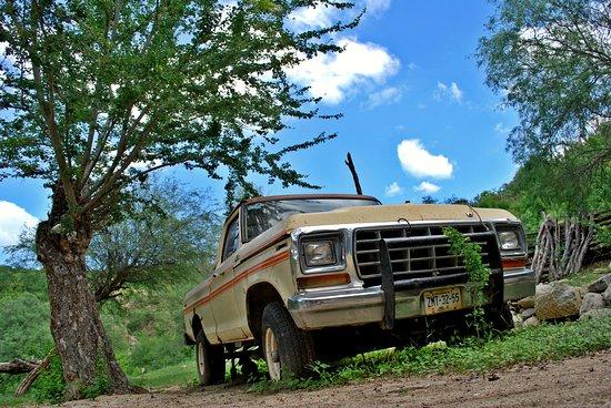Todos Santos, Mexico: Ford 1979... reliquia de los habitantes del rancho...