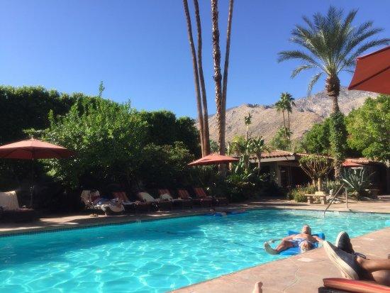 Palm Springs Paradise!