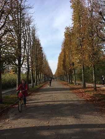 Potsdam's Gardens: photo0.jpg