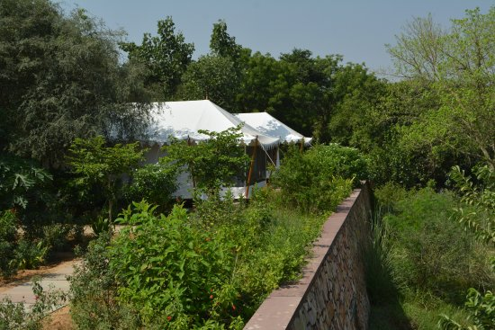 Khem Villas: Luxury tents