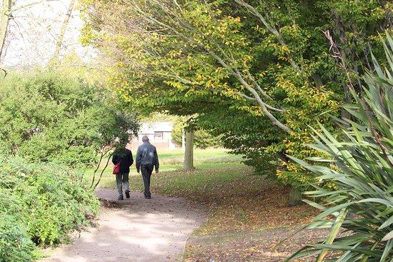 Chelmsford, UK: photo6.jpg