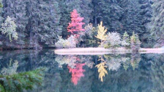 Bilde fra Demanovska Dolina