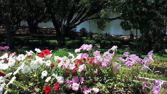 Atibaia, SP: O cuidado com as flores nos canteiros é digno.