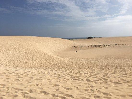 Corralejo Dunes: Duna