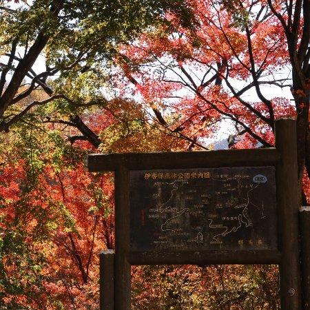 Ikaho Shinrin Park