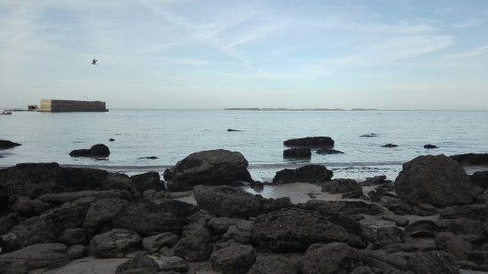 Longues-sur-Mer, Francia: Star Wars ou Pinocchio ? La batterie de Longues sur mer et en contrebas les falaises et la plage