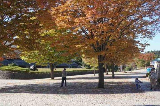 Tomioka, Japan: 全体はとても広く、道路の両側に展開しています。