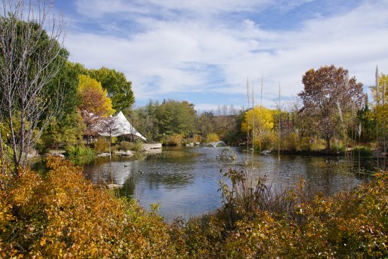 Beautiful pond picture of abq biopark botanic garden albuquerque tripadvisor for Botanical gardens albuquerque new mexico