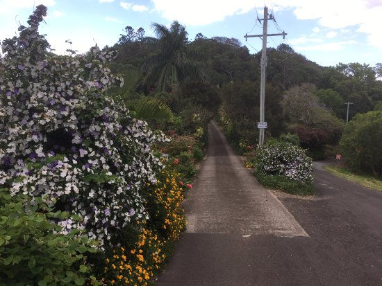 Cooroy Country Cottages: Entry to Cottages.